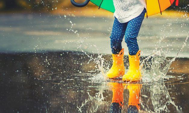 Rainy Day Kids Guide Port Macquarie