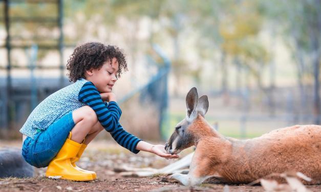 Australian Animals Word Search